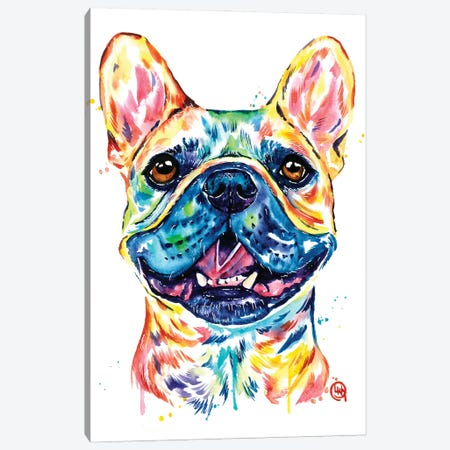 Fawn French Bulldog - Frenchie Canvas Print #LWH153} by Lisa Whitehouse Canvas Print