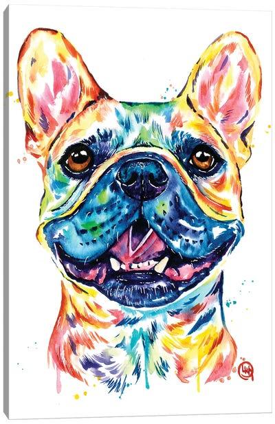 Fawn French Bulldog - Frenchie Canvas Art Print