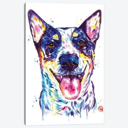 Blue Heeler Canvas Print #LWH154} by Lisa Whitehouse Canvas Art