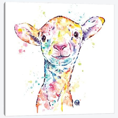 Little Lamb Canvas Print #LWH161} by Lisa Whitehouse Canvas Art