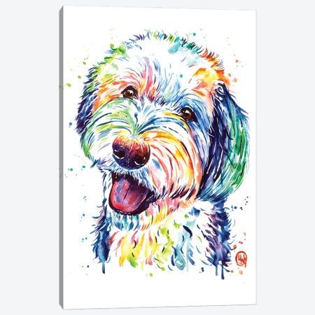 Sheepadoodle Canvas Print #LWH165} by Lisa Whitehouse Canvas Art Print