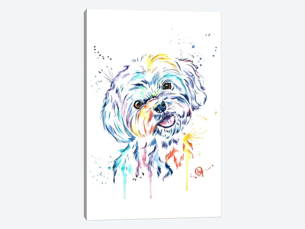 Havanese by Lisa Whitehouse 1-piece Canvas Art Print