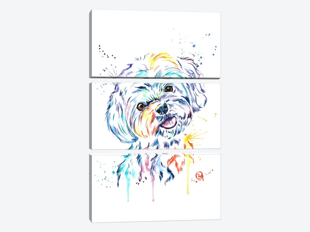 Havanese by Lisa Whitehouse 3-piece Canvas Art Print
