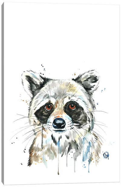 Peekaboo Raccoon Canvas Art Print