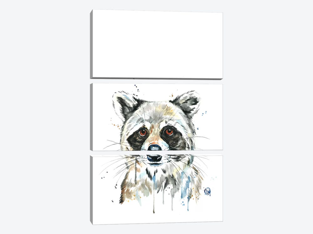 Peekaboo Raccoon by Lisa Whitehouse 3-piece Canvas Art Print