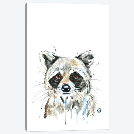 Peekaboo Raccoon Canvas Print #LWH33} by Lisa Whitehouse Canvas Art Print