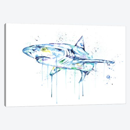 Shark Canvas Print #LWH40} by Lisa Whitehouse Canvas Wall Art