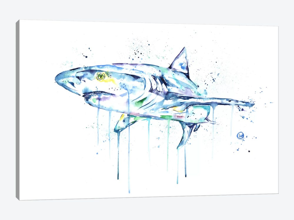 Shark by Lisa Whitehouse 1-piece Canvas Print