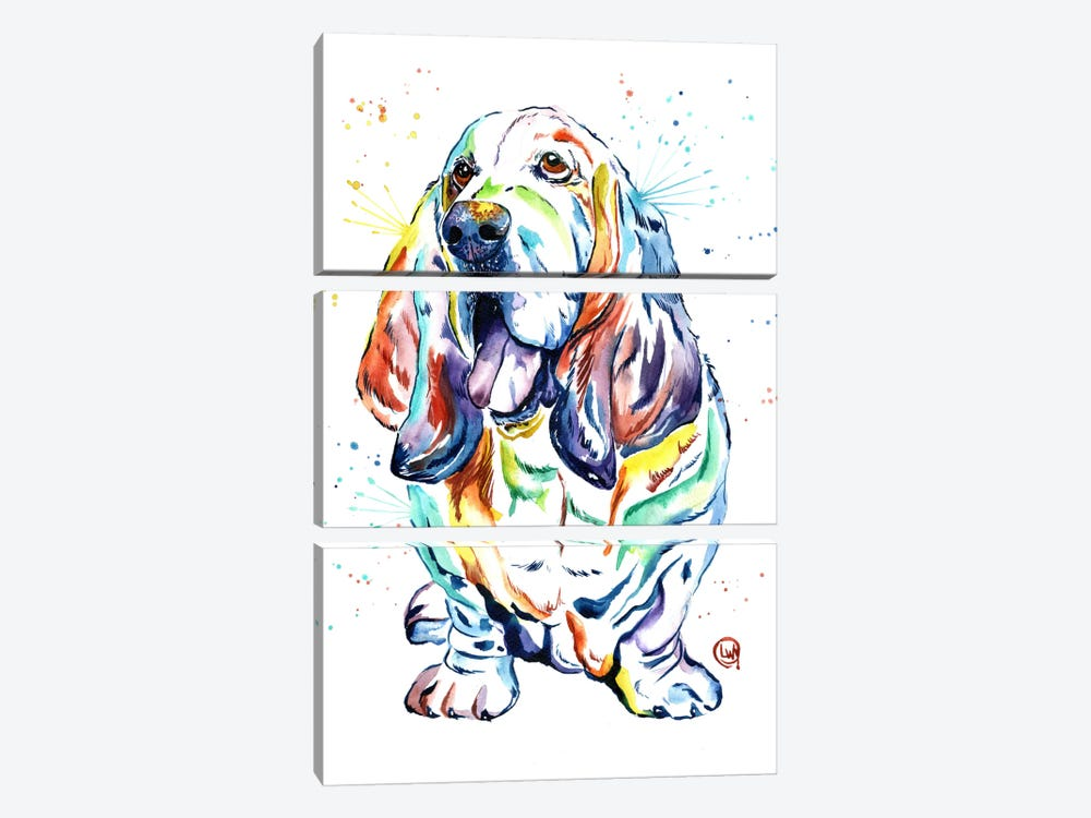 Basset Hound Baily by Lisa Whitehouse 3-piece Canvas Print