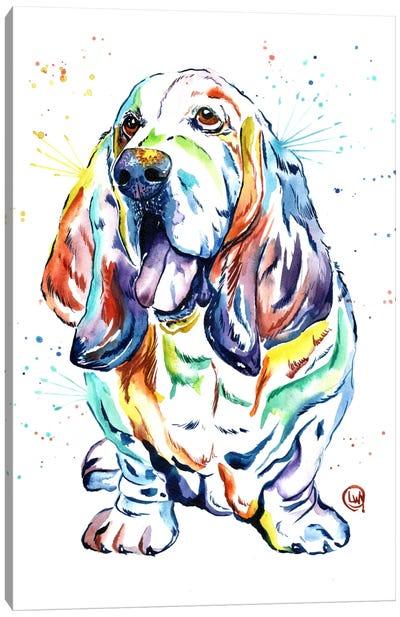 Basset Hound Baily Canvas Art Print