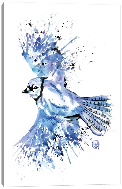 Bluetiful - Blue Jay Canvas Art Print