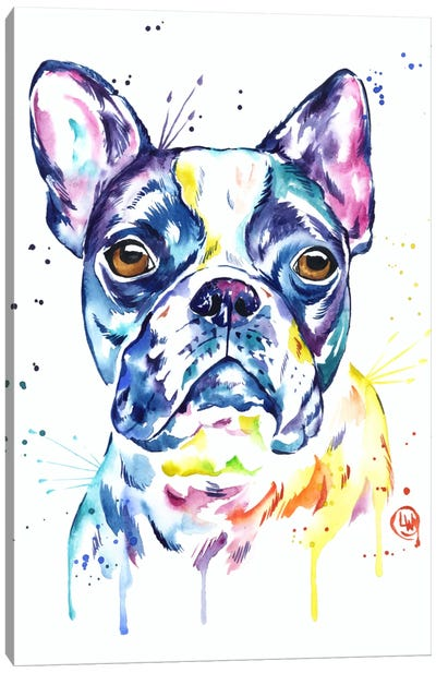 Boston Terrier Canvas Art Print