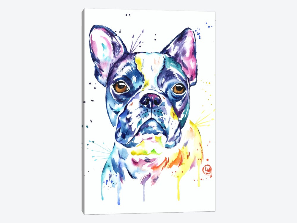 Boston Terrier by Lisa Whitehouse 1-piece Canvas Print
