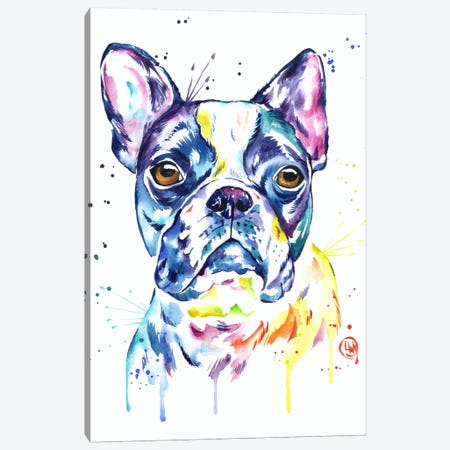 Boston Terrier Canvas Print #LWH7} by Lisa Whitehouse Canvas Print