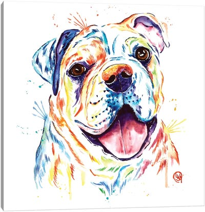 Shelby Rue The Bulldog Canvas Art Print