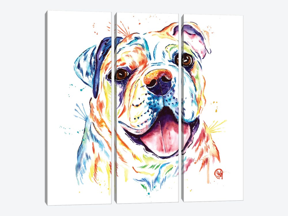 Shelby Rue The Bulldog by Lisa Whitehouse 3-piece Art Print