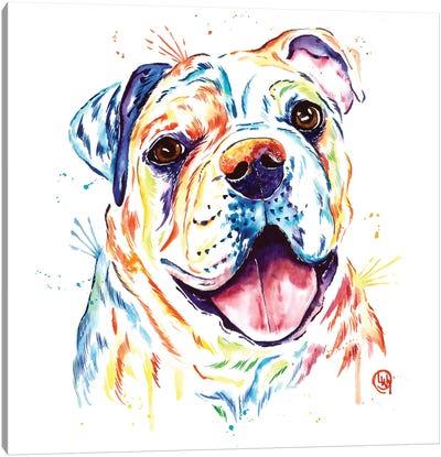 Shelby Rue The Bulldog Canvas Art Print