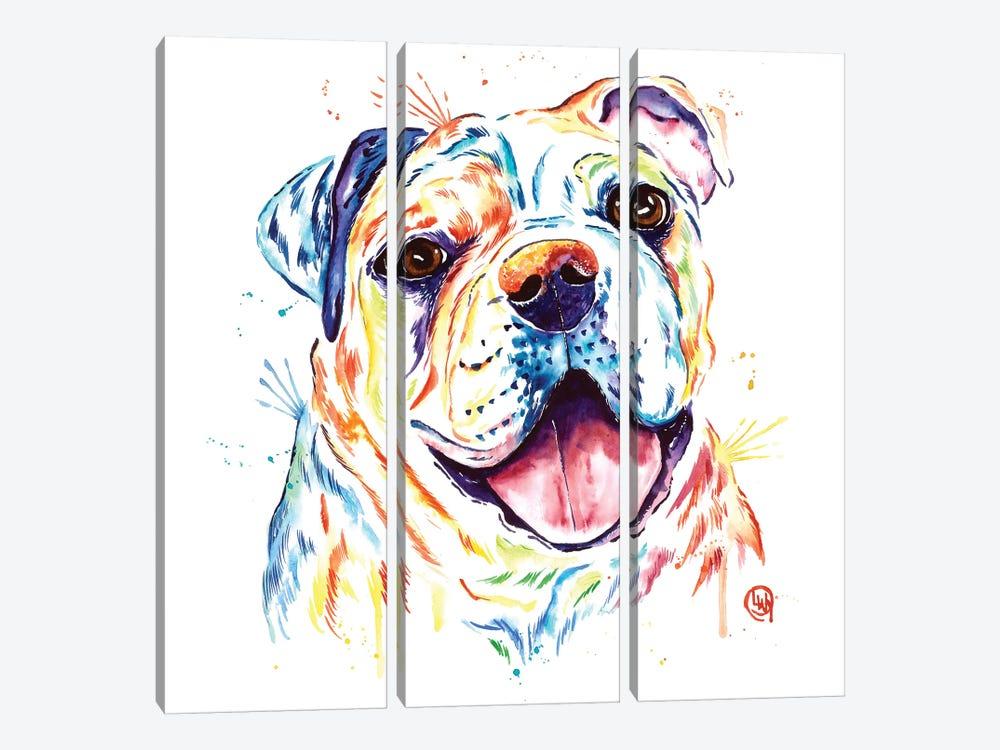 Shelby Rue The Bulldog by Lisa Whitehouse 3-piece Art Print