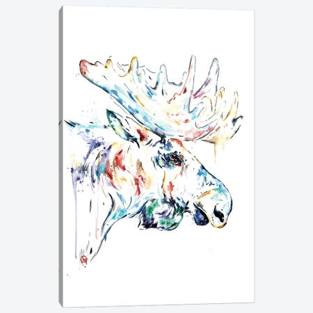 Moose Canvas Print #LWH92} by Lisa Whitehouse Art Print