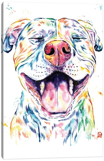 Tango The Pit Bull Canvas Art Print
