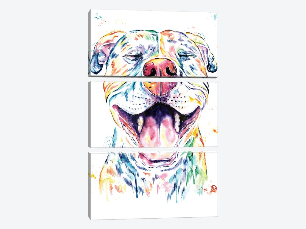 Tango The Pit Bull by Lisa Whitehouse 3-piece Canvas Wall Art