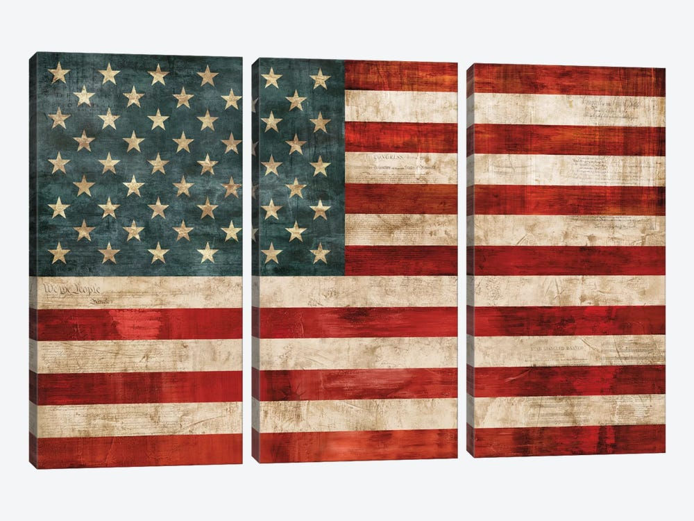 Allegiance by Luke Wilson 3-piece Canvas Wall Art