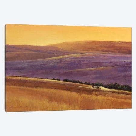 Wild West Afternoon Canvas Print #LWL31} by Lawrence Lee Art Print