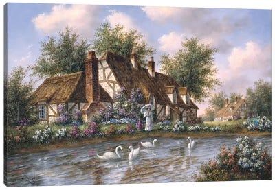 Admiring the Swans Canvas Art Print