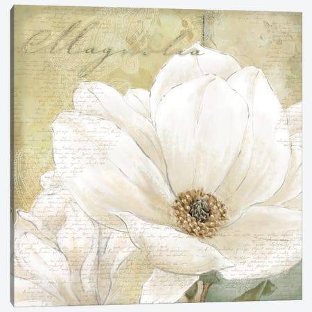 Aqua Magnolia I Canvas Print #LWO1} by Linda Wood Canvas Art Print