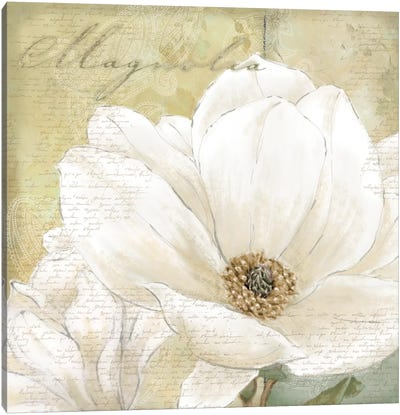 Aqua Magnolia I Canvas Art Print