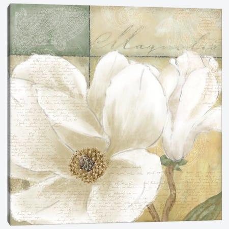 Aqua Magnolia II Canvas Print #LWO2} by Linda Wood Art Print
