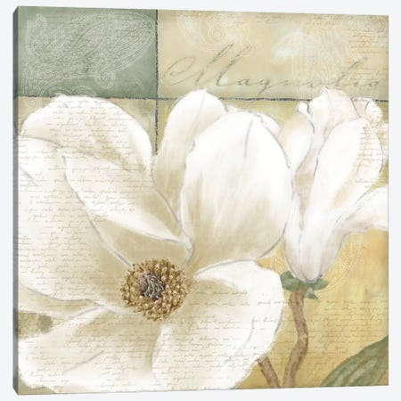 Aqua Magnolia II Canvas Print #LWO2} by Linda Wood Art Print