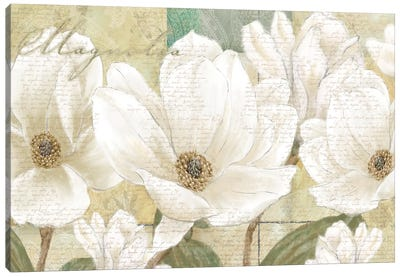 Magnolia Canvas Art Print