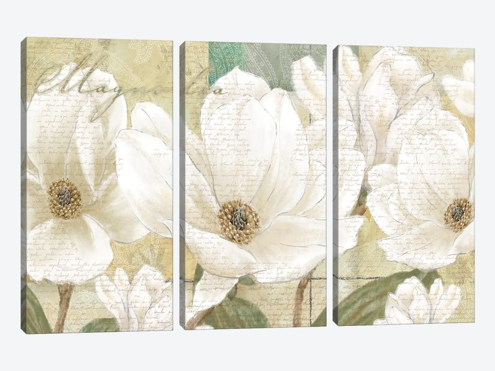 Magnolia by Linda Wood 3-piece Canvas Wall Art