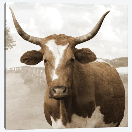 Moov Over Canvas Print #LWS4} by Sheldon Lewis Art Print