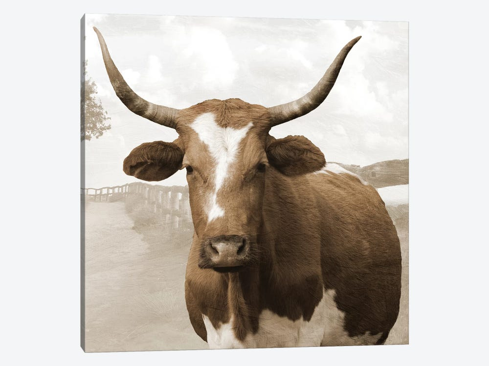 Moov Over by Sheldon Lewis 1-piece Canvas Print