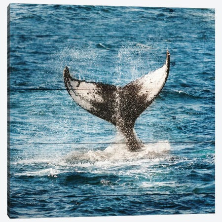 Tails Of The Whale Canvas Print #LWS5} by Sheldon Lewis Art Print
