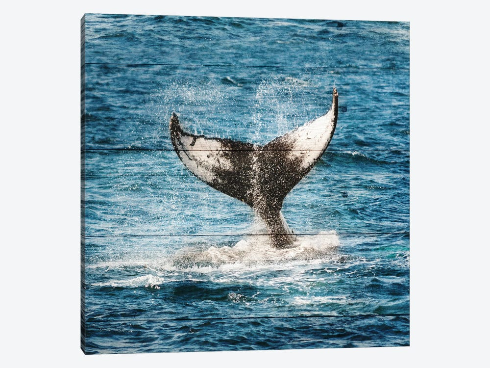 Tails Of The Whale by Sheldon Lewis 1-piece Canvas Art