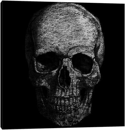 Modern Art- Skull Fibers Canvas Art Print