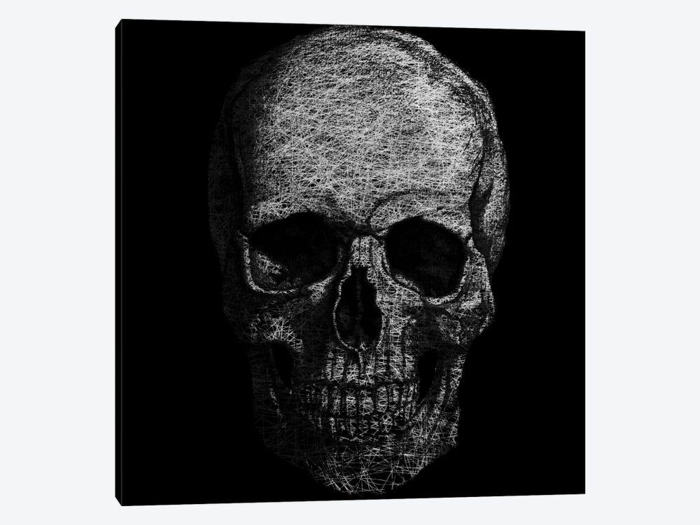Modern Art- Skull Fibers by 5by5collective 1-piece Canvas Art Print