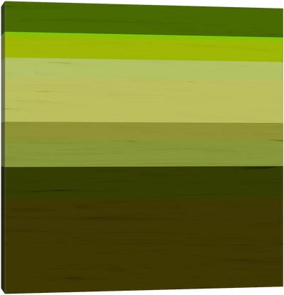 Modern Art- Olive Tree Canvas Print #MA198