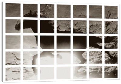 Modern Art - Swimming Horse Canvas Print #MA425
