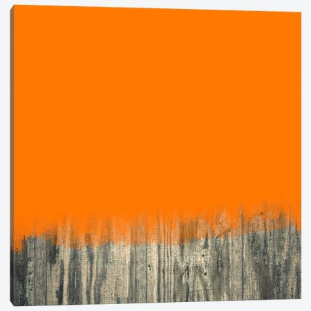 Modern Art- Over the Wood Fence Canvas Print #MA62} by 5by5collective Canvas Print