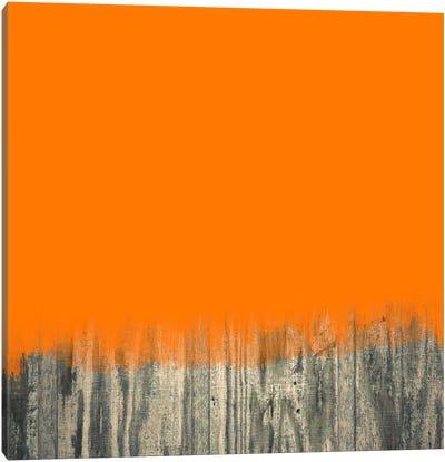 Modern Art- Over the Wood Fence Canvas Art Print