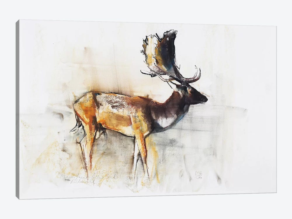 Magnificent Fallow Buck by Mark Adlington 1-piece Canvas Wall Art