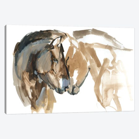 Nose To Nose (Przewalski) Canvas Print #MAD13} by Mark Adlington Canvas Art