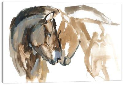 Nose To Nose (Przewalski) Canvas Art Print