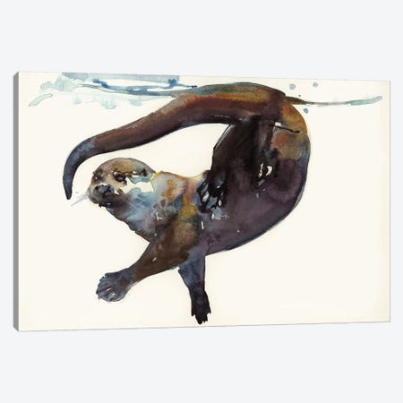 Otter Study II - 'Talisker' Canvas Print #MAD16} by Mark Adlington Canvas Art Print