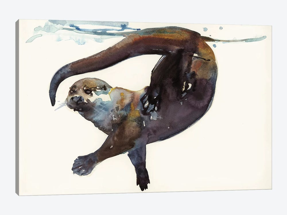 Otter Study II - 'Talisker' by Mark Adlington 1-piece Canvas Art Print