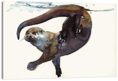 Otter Study II - 'Talisker' Canvas Art Print